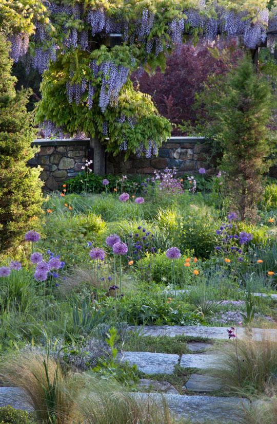 Plants For Rock Garden Landscaping